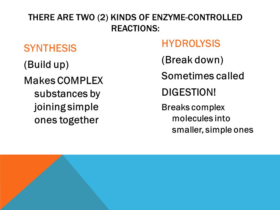 SYNTHESIS (Build up) Makes COMPLEX substances by joining simple ones together HYDROLYSIS (Break down) Sometimes called DIGESTION.