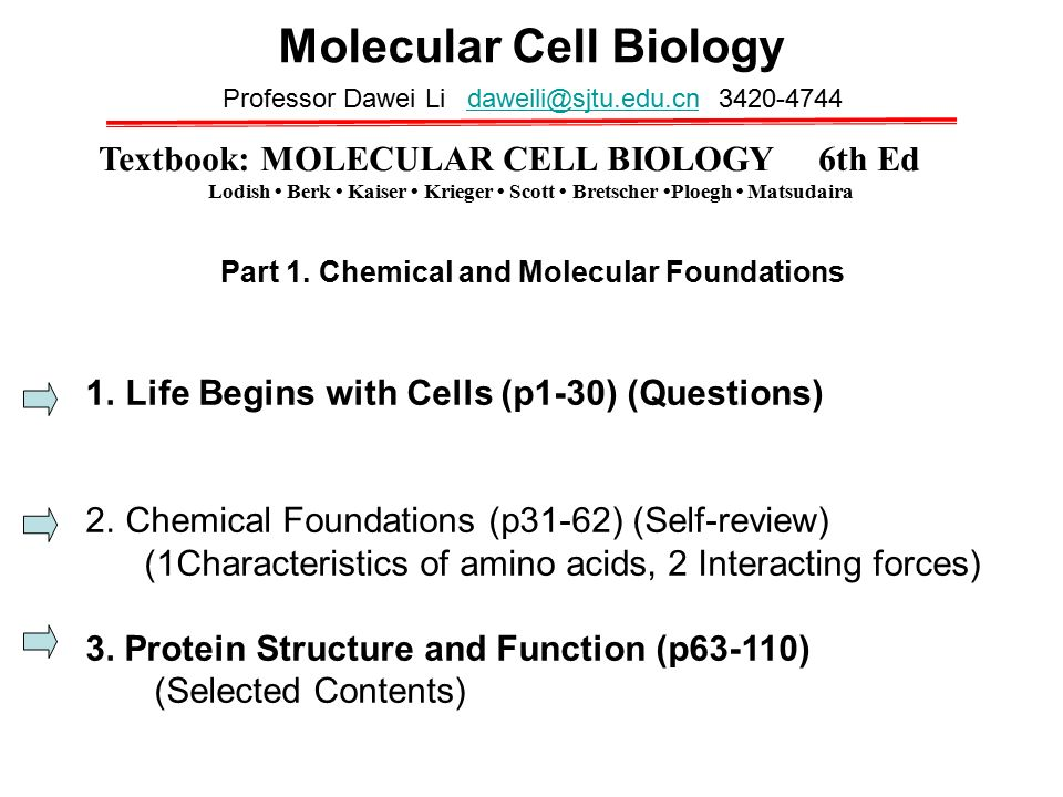 Cell biology questions?