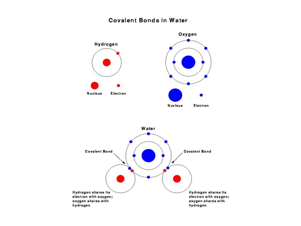 Bonds Ionic Bond – Positive and Negative ions combine and electrons are transferred –Ex.