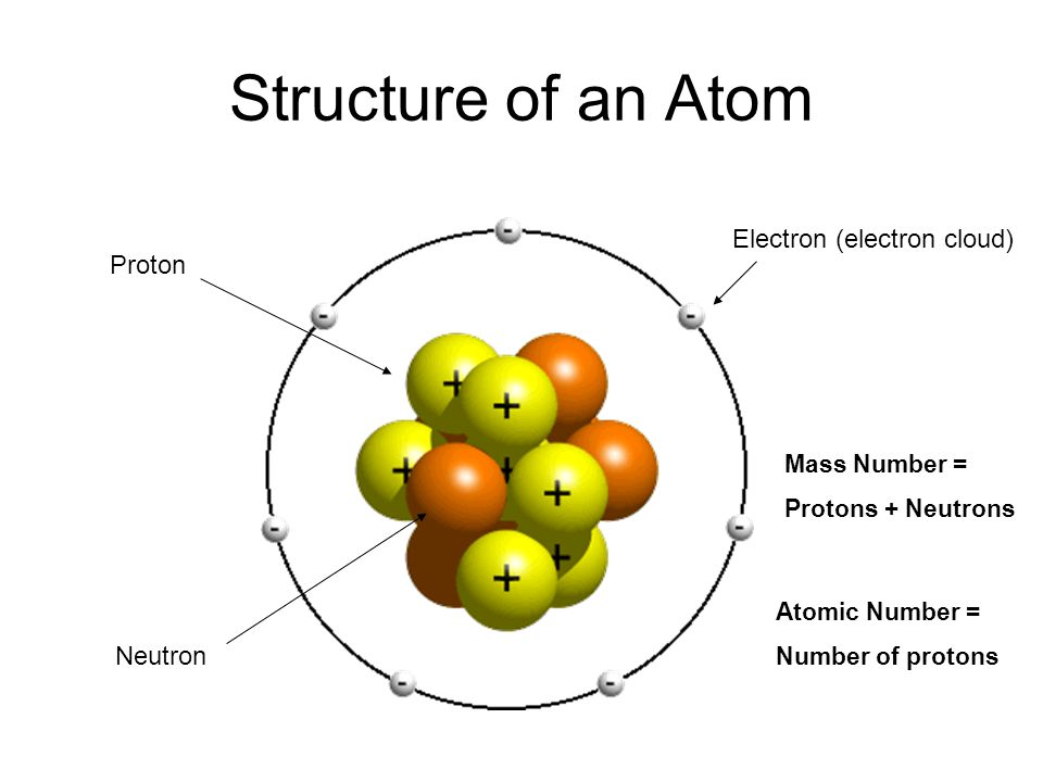 Forms of matter that contain only one type of atom are called elements Atoms combine to form many different types of matter