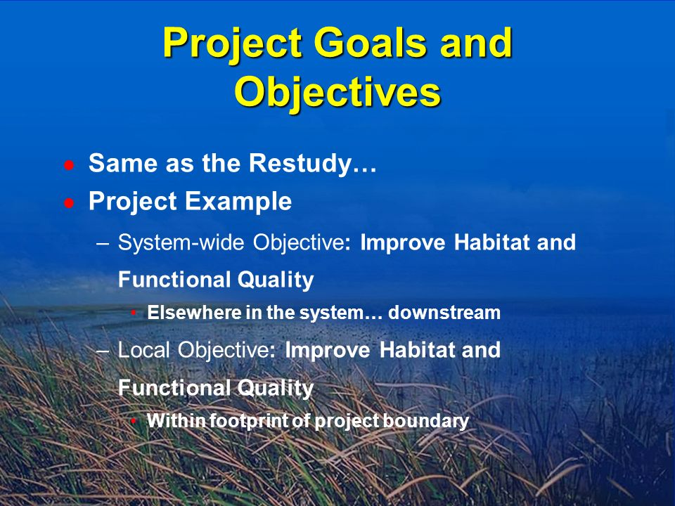 l Same as the Restudy… l Project Example –System-wide Objective: Improve Habitat and Functional Quality Elsewhere in the system… downstream –Local Objective: Improve Habitat and Functional Quality Within footprint of project boundary Project Goals and Objectives