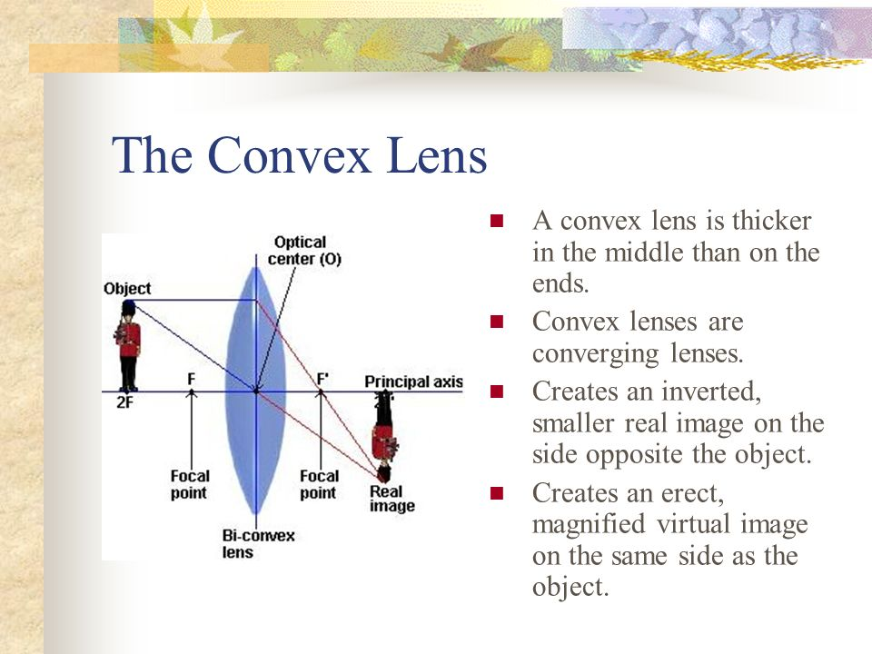The Convex Lens A convex lens is thicker in the middle than on the ends.