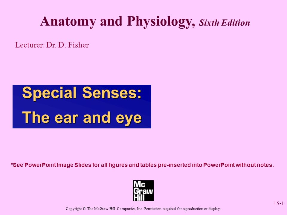 15-1 Anatomy and Physiology, Sixth Edition Lecturer: Dr. D. Fisher ...