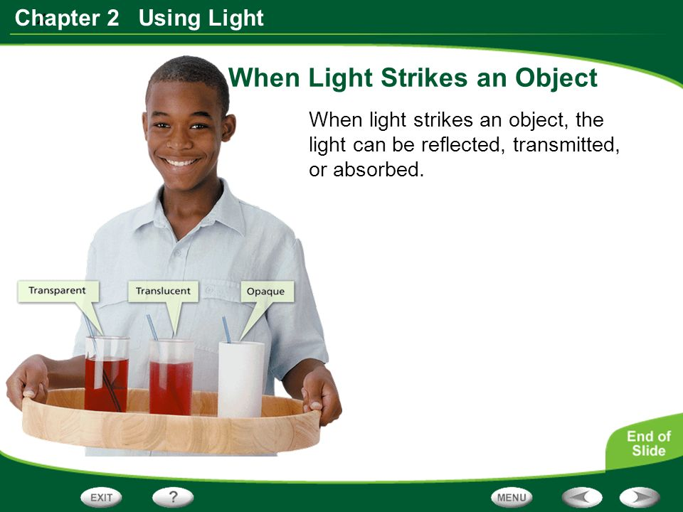 x Chapter 2 Using Light When Light Strikes an Object When light strikes an object, the light can be reflected, transmitted, or absorbed.