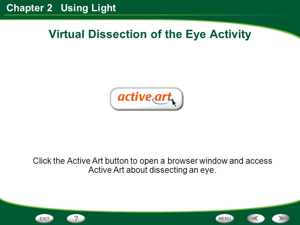 x Chapter 2 Using Light Virtual Dissection of the Eye Activity Click the Active Art button to open a browser window and access Active Art about dissecting an eye.