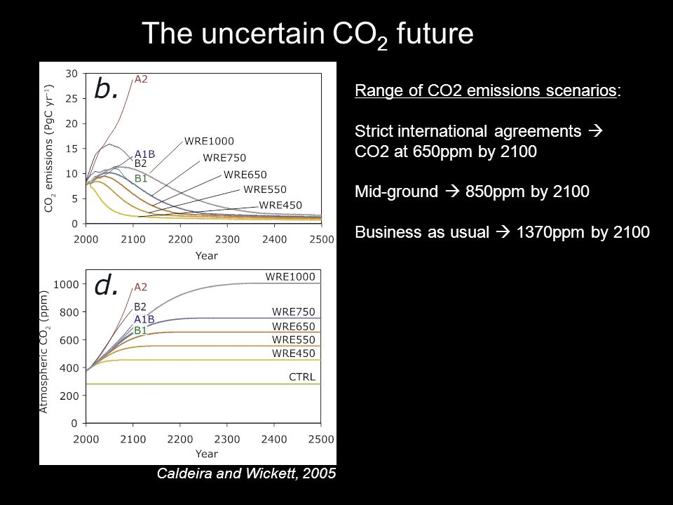 The uncertain CO 2 future Range of CO2 emissions scenarios: Strict international agreements  CO2 at 650ppm by 2100 Mid-ground  850ppm by 2100 Business as usual  1370ppm by 2100 Caldeira and Wickett, 2005