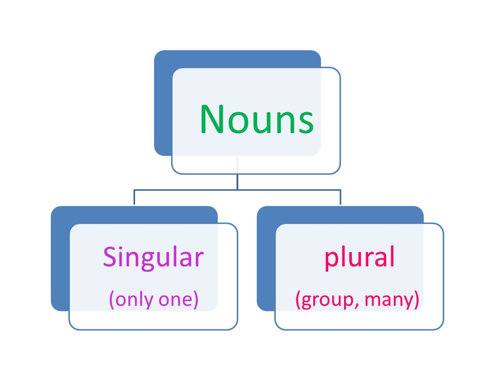 Nouns Singular (only one) plural (group, many)