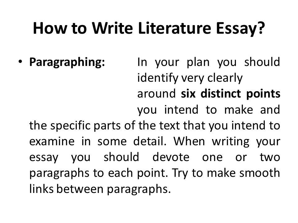 What is literature essay