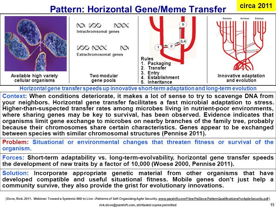 gene transfer pdf