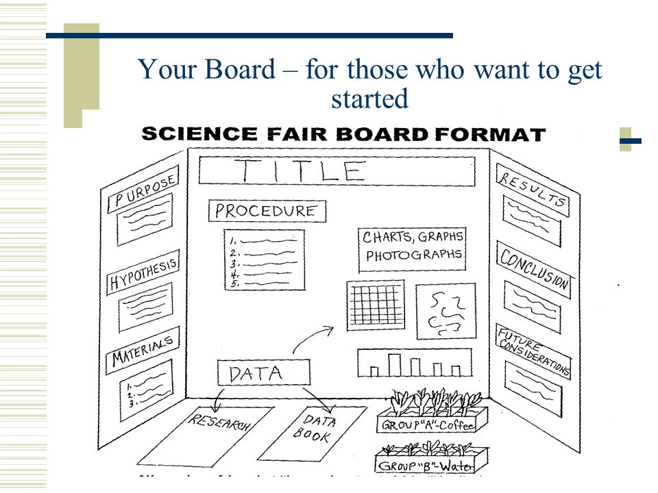 science projects format