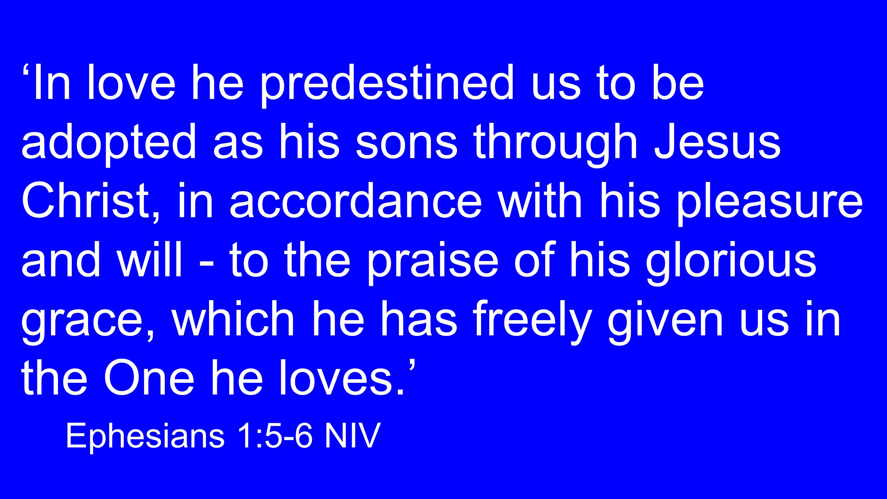 'In love he predestined us to be adopted as his sons through Jesus Christ, in accordance with his pleasure and will - to the praise of his glorious grace, which he has freely given us in the One he loves.' Ephesians 1:5-6 NIV