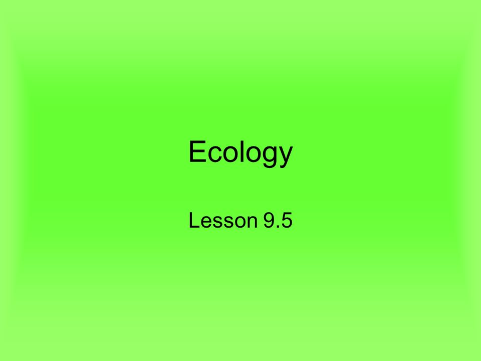Ecology Lesson 9.5. Lesson Objectives Define population size ...