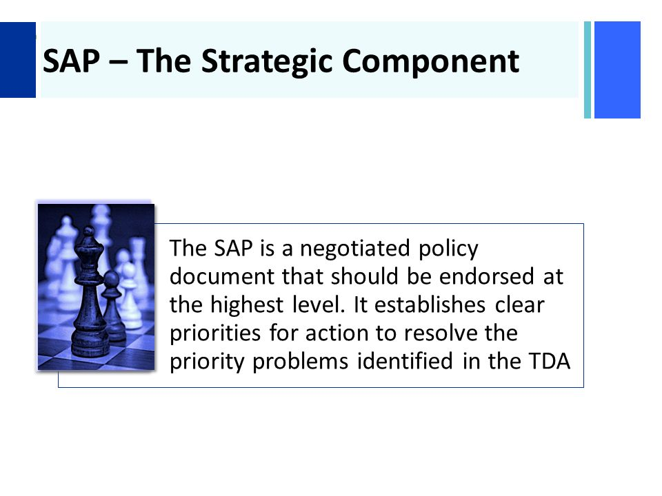 + SAP – The Strategic Component The SAP is a negotiated policy document that should be endorsed at the highest level.
