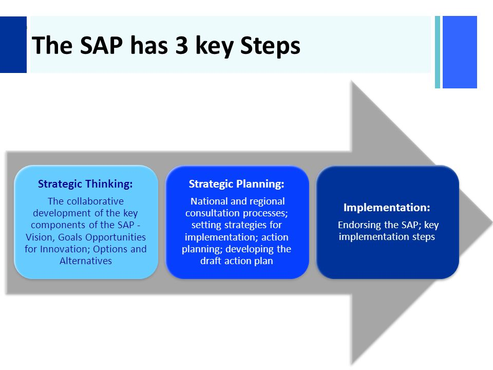+ The SAP has 3 key Steps Strategic Thinking: The collaborative development of the key components of the SAP - Vision, Goals Opportunities for Innovation; Options and Alternatives Strategic Planning: National and regional consultation processes; setting strategies for implementation; action planning; developing the draft action plan Implementation: Endorsing the SAP; key implementation steps