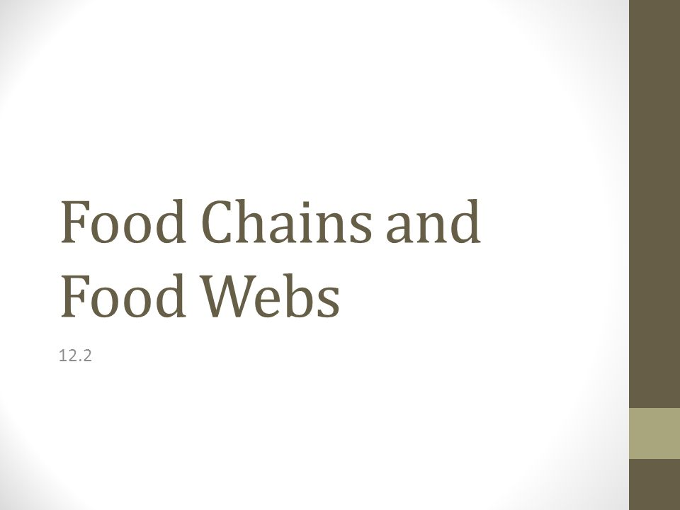 Food Chains and Food Webs 12.2