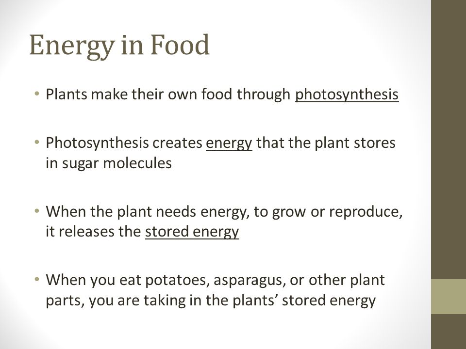 Energy in Food Plants make their own food through photosynthesis Photosynthesis creates energy that the plant stores in sugar molecules When the plant needs energy, to grow or reproduce, it releases the stored energy When you eat potatoes, asparagus, or other plant parts, you are taking in the plants' stored energy