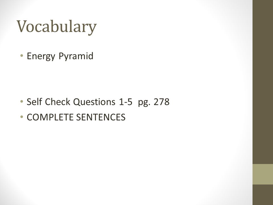 Vocabulary Energy Pyramid Self Check Questions 1-5 pg. 278 COMPLETE SENTENCES