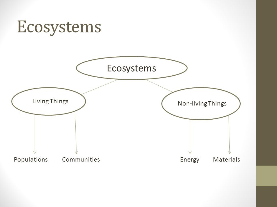 Ecosystems PopulationsCommunitiesEnergyMaterials Living Things Non-living Things