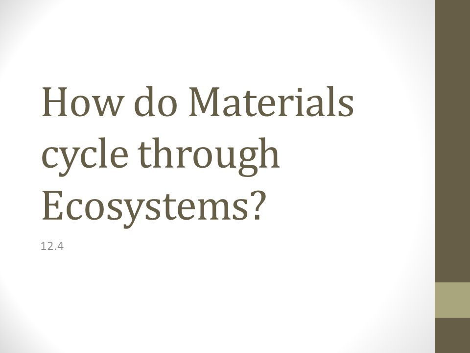 How do Materials cycle through Ecosystems 12.4