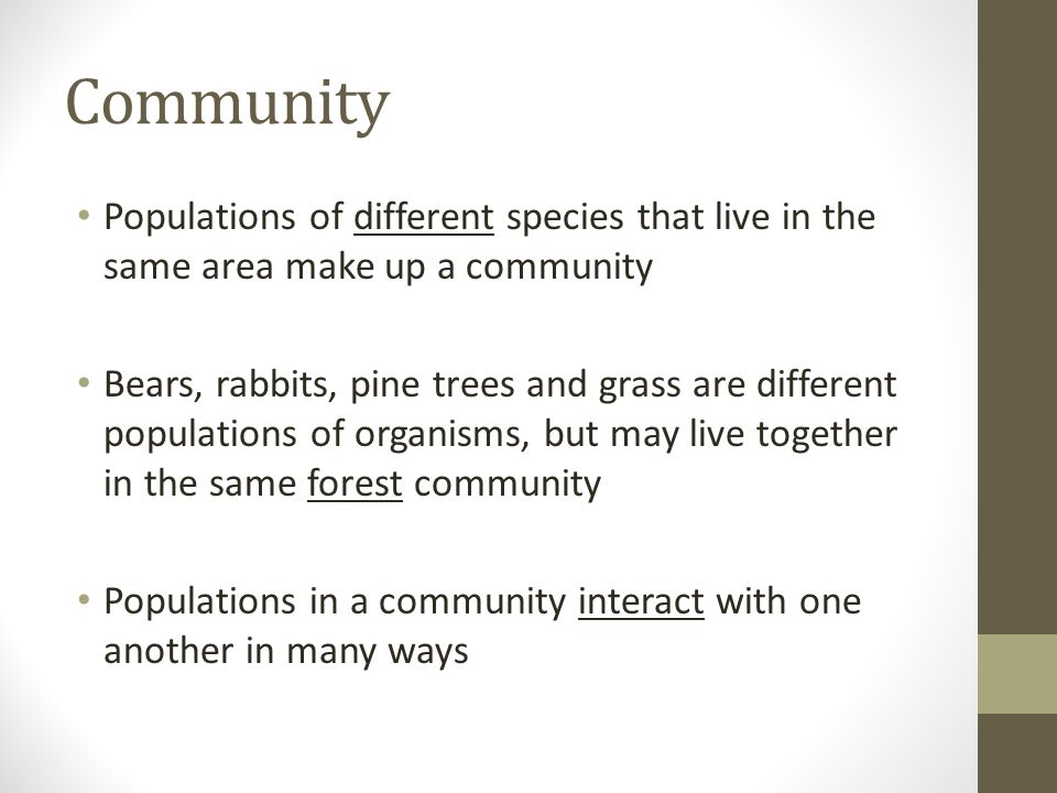 Community Populations of different species that live in the same area make up a community Bears, rabbits, pine trees and grass are different populations of organisms, but may live together in the same forest community Populations in a community interact with one another in many ways