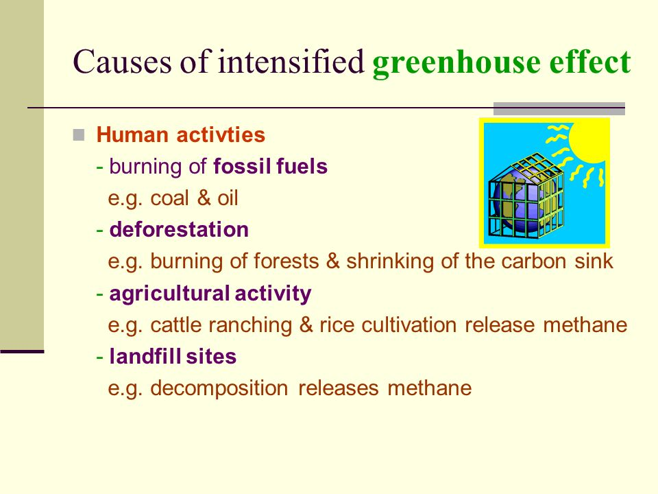 Causes of intensified greenhouse effect Human activties - burning of fossil fuels e.g.