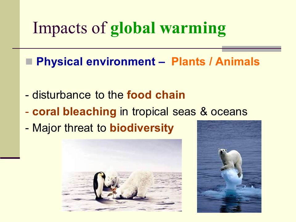 Impacts of global warming Physical environment – Plants / Animals - disturbance to the food chain - coral bleaching in tropical seas & oceans - Major threat to biodiversity