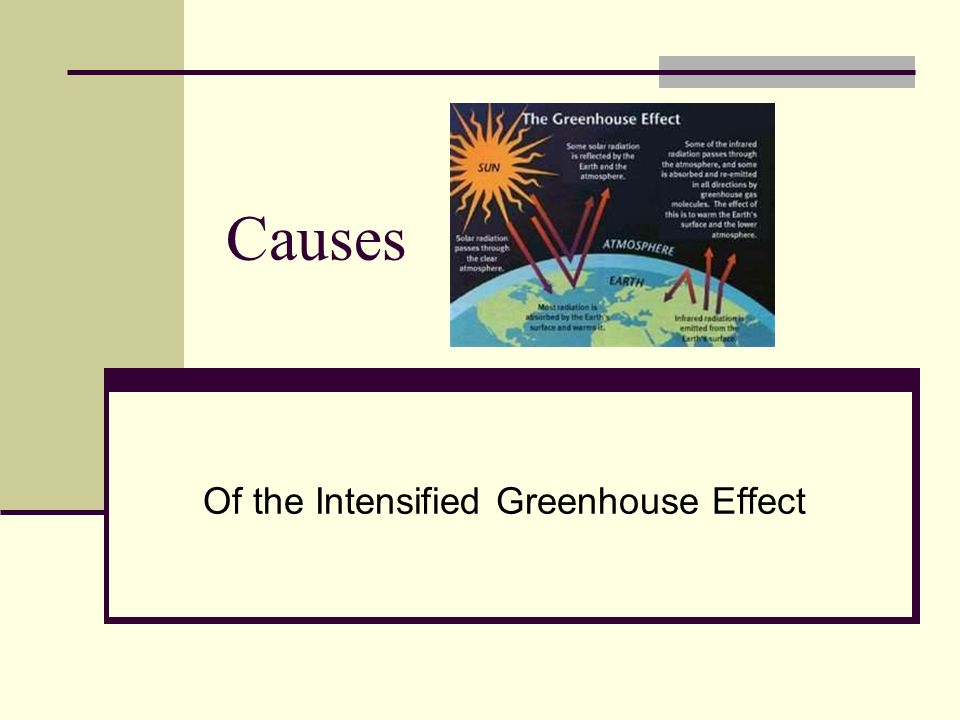 Causes Of the Intensified Greenhouse Effect