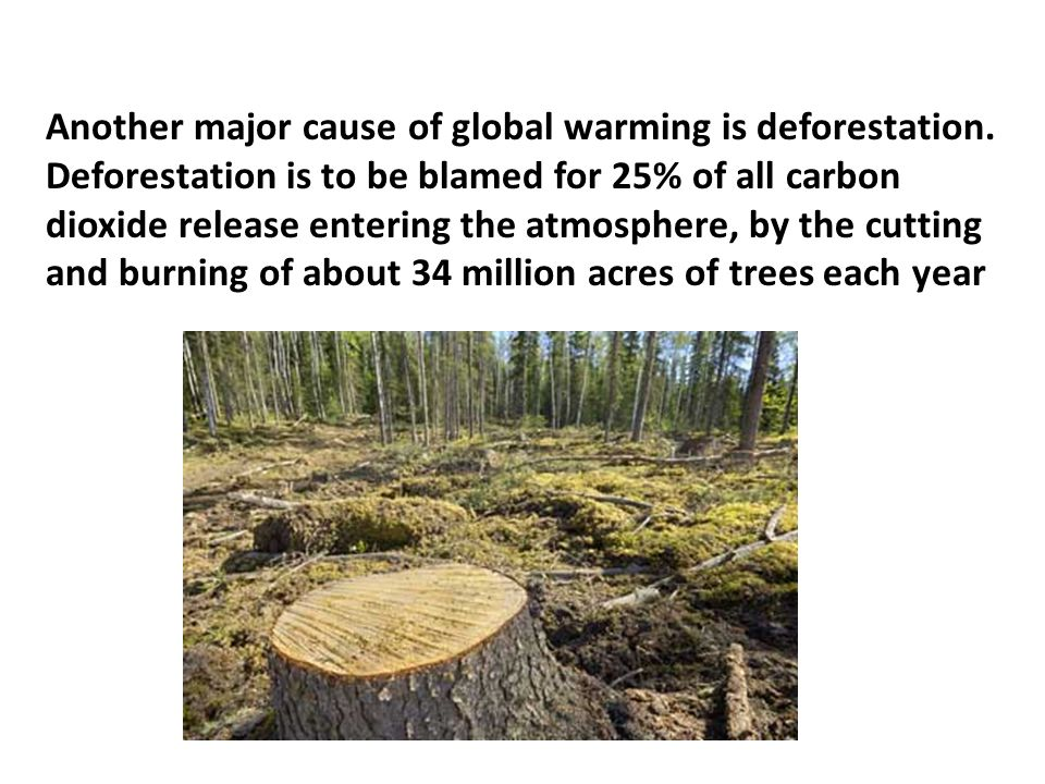 Another major cause of global warming is deforestation.