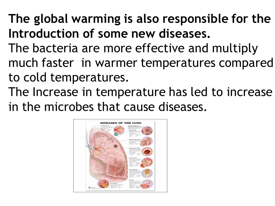 The global warming is also responsible for the Introduction of some new diseases.