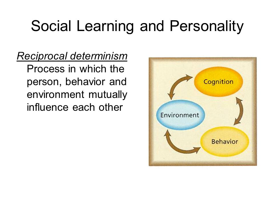 Social Learning and Personality Reciprocal determinism Process in which the person, behavior and environment mutually influence each other