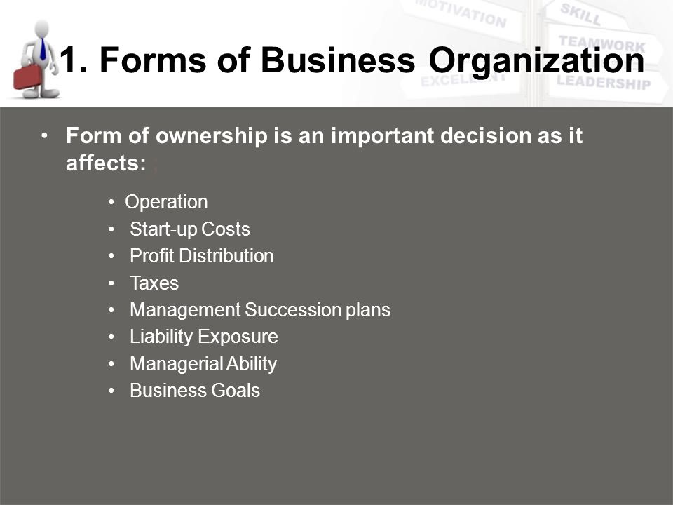 form of ownership business plan