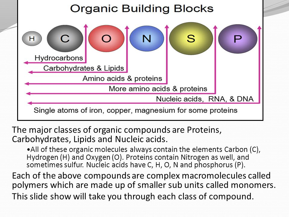 a description of carbohydrates molecules that contain carbon hydrogen and oxygen