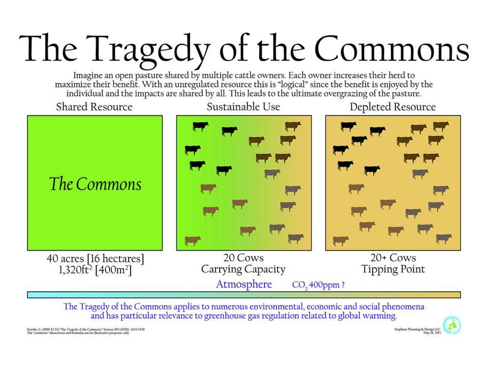 The Public Domain Chapter 3. Enclosure Movement What is enclosure ...