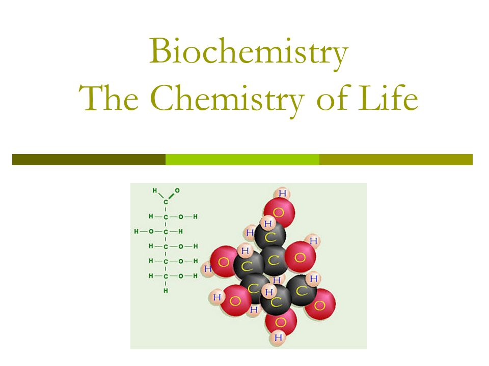 Biochemistry The Chemistry of Life