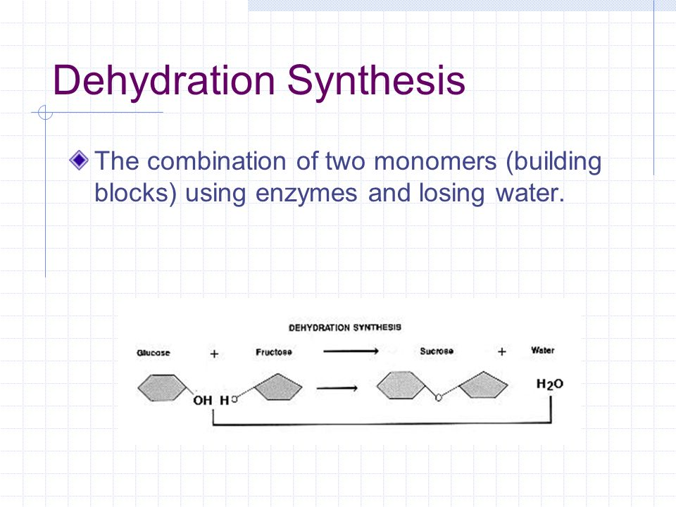 How Organic Compounds are Formed and Destroyed Dehydration Synthesis Hydrolysis