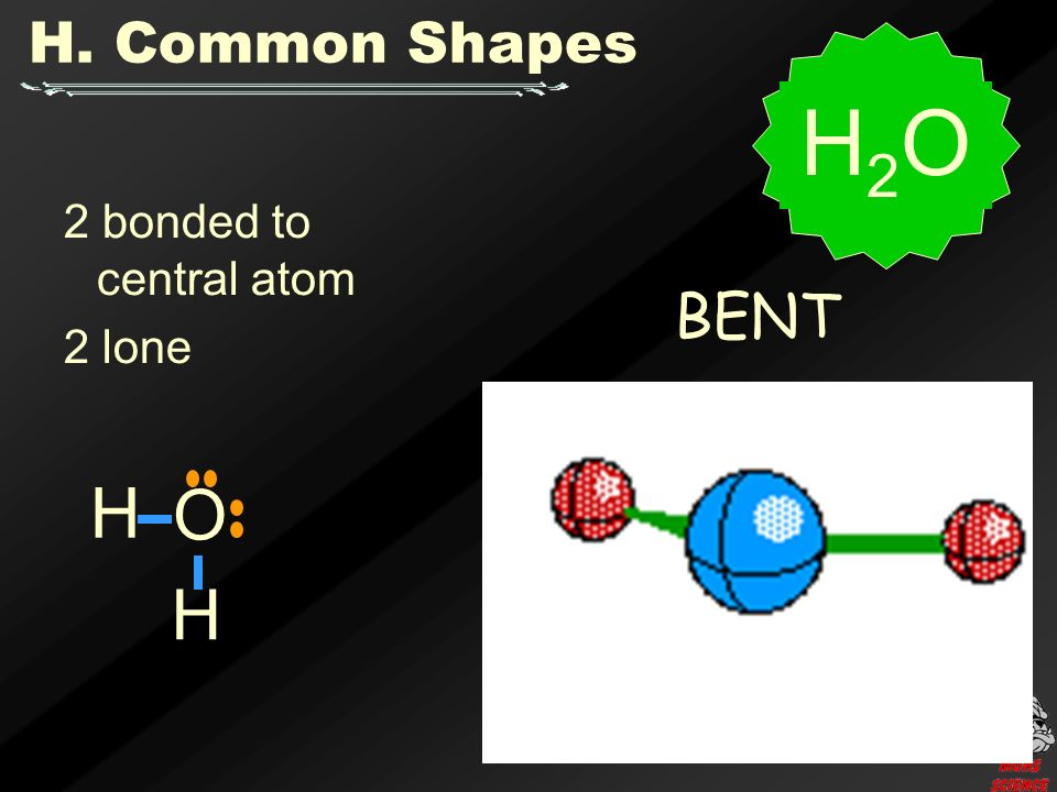2 bonded to central atom 2 lone BENT H2OH2O H. Common Shapes O H H