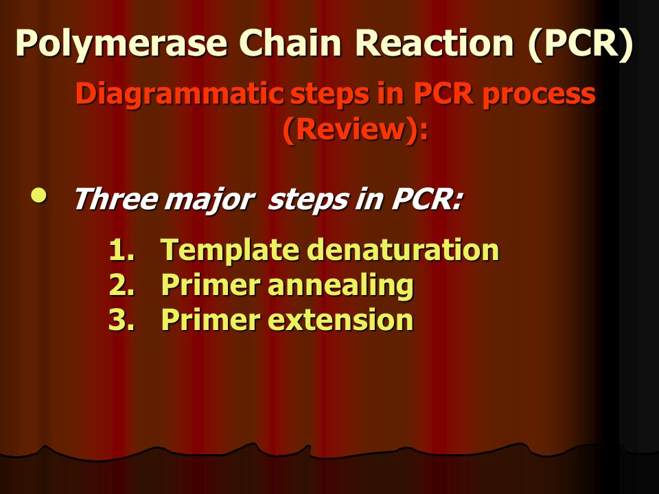 Polymerase Chain Reaction (PCR) Diagrammatic steps in PCR process (Review): Three major steps in PCR: Three major steps in PCR: 1.Template denaturation 2.Primer annealing 3.Primer extension