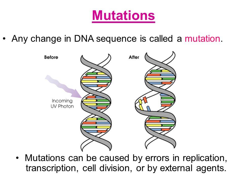 evolution - Viral Mutation Mechanism - Biology Stack Exchange