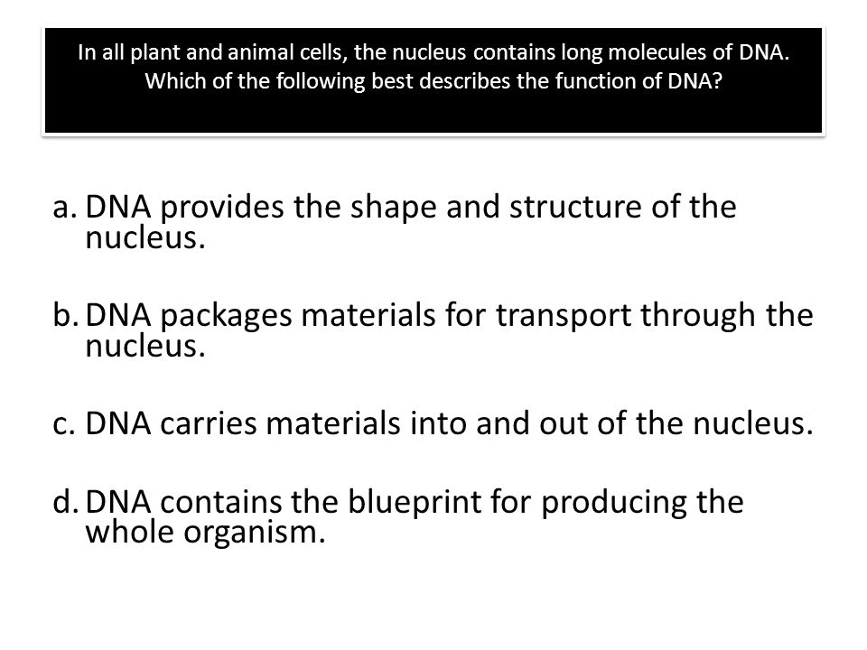 Worksheets Dna The Molecule Of Heredity Worksheet Key dna the molecule of heredity review answer following list in all plant and animal cells nucleus contains long molecules which