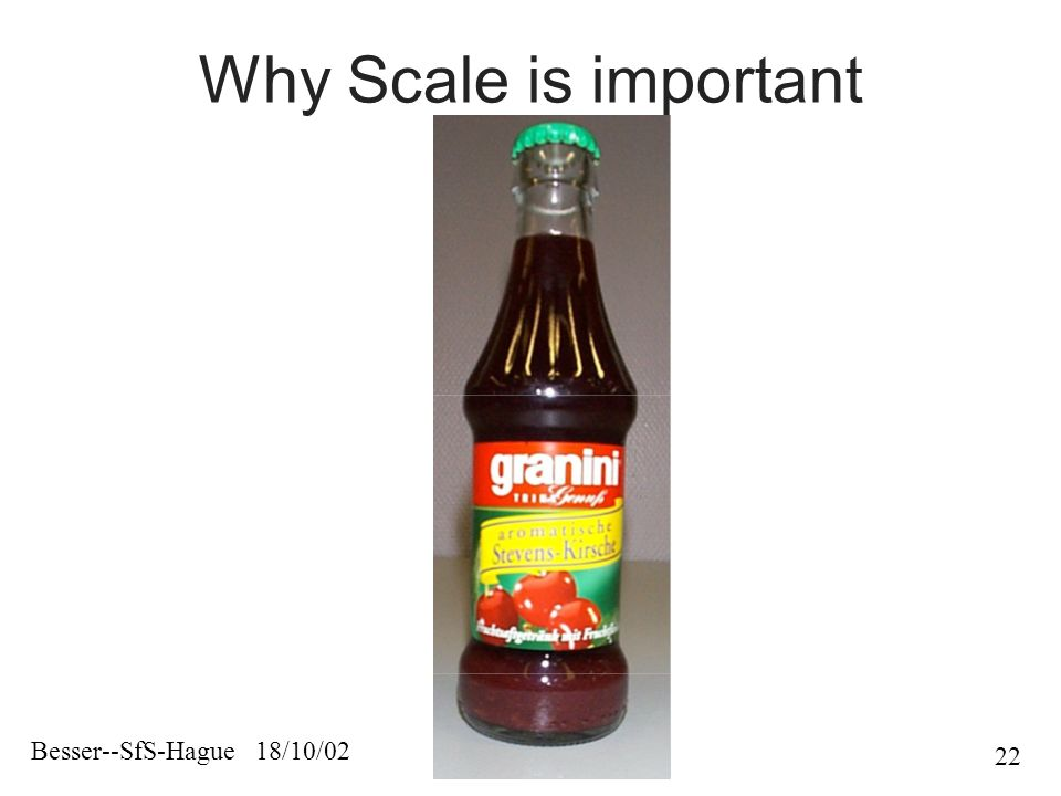Besser--SfS-Hague 18/10/02 22 Why Scale is important