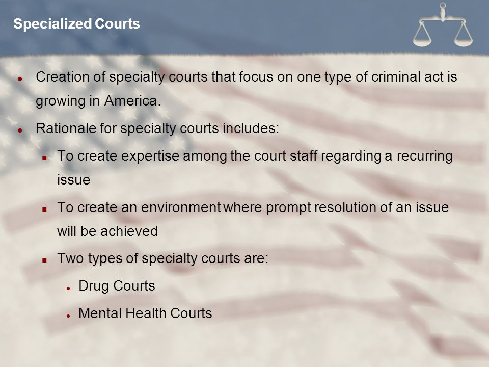 Creation of specialty courts that focus on one type of criminal act is growing in America.