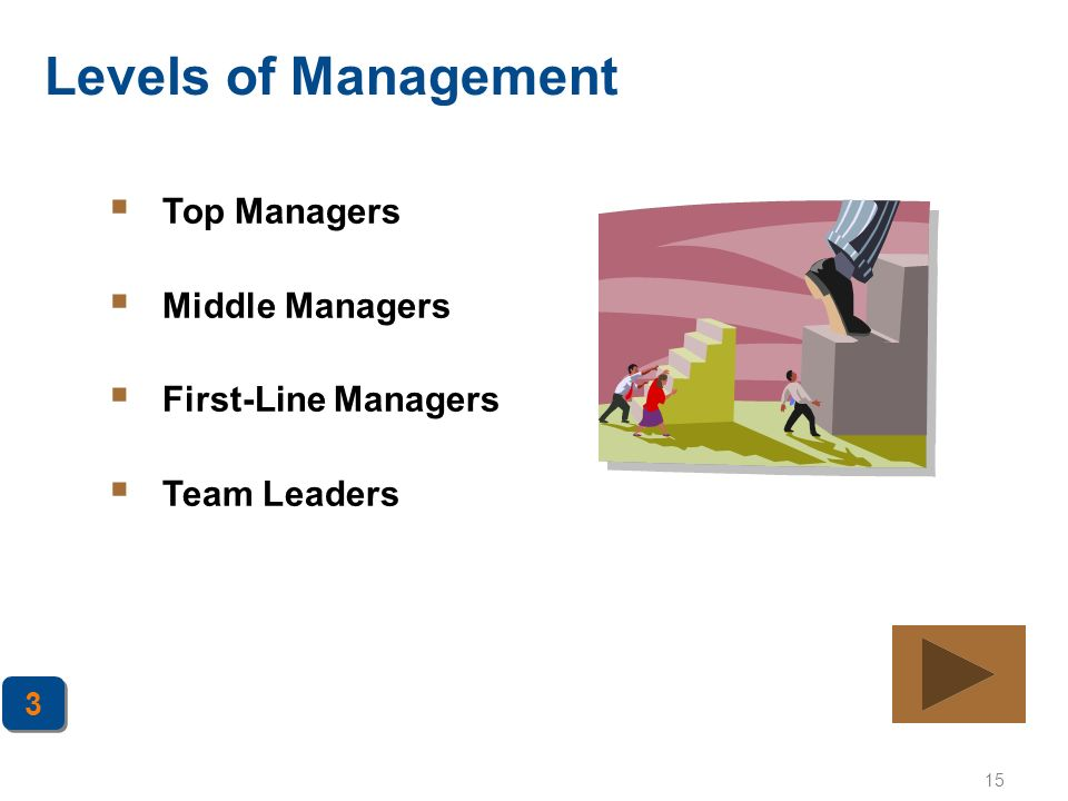 15 Levels of Management  Top Managers  Middle Managers  First-Line Managers  Team Leaders 3 3