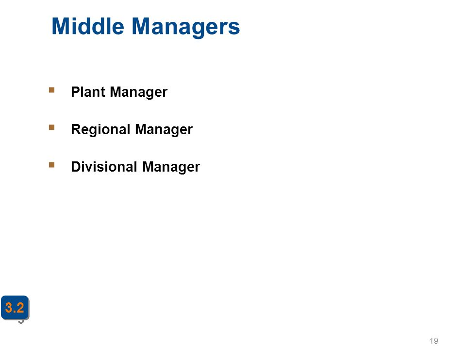 19 Middle Managers 3 3.2  Plant Manager  Regional Manager  Divisional Manager