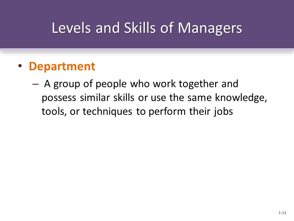 Levels and Skills of Managers Department – A group of people who work together and possess similar skills or use the same knowledge, tools, or techniq