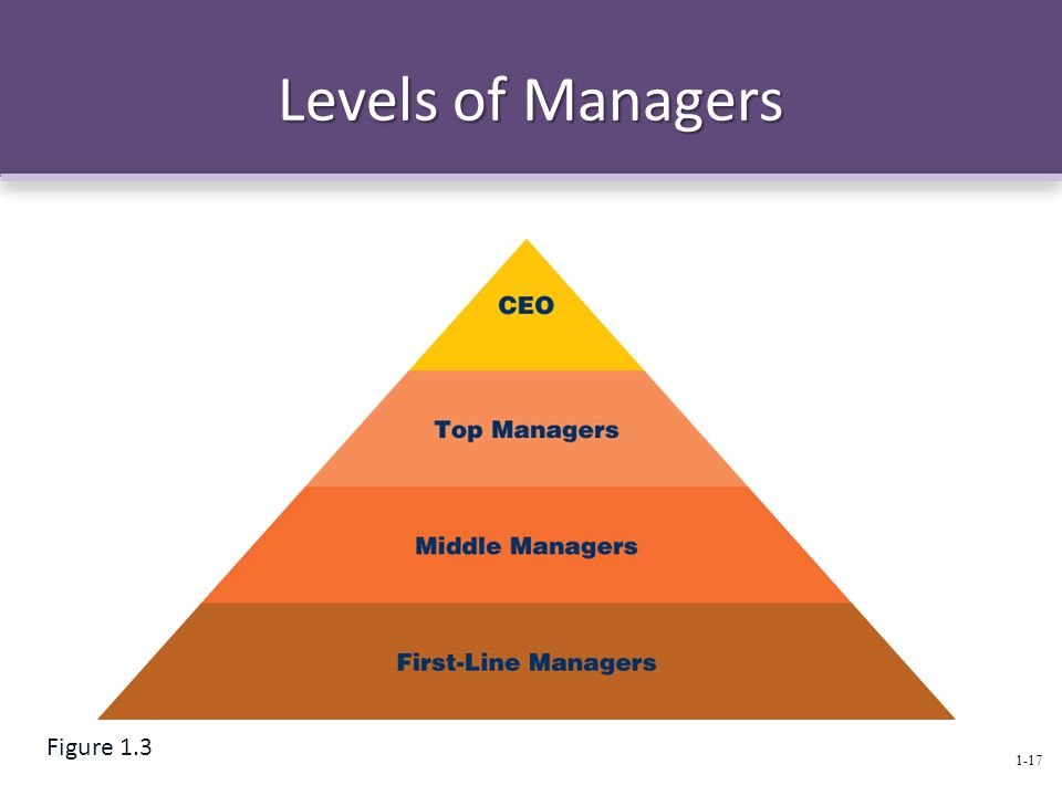Levels of Managers 1-17 Figure 1.3
