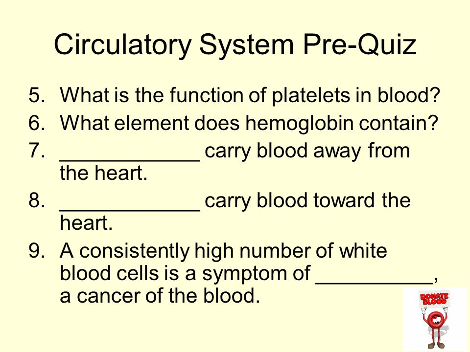 Diagram word bank superior vena cava inferior vena cava right circulatory system pre quiz 5what is the function of platelets in blood ccuart Image collections
