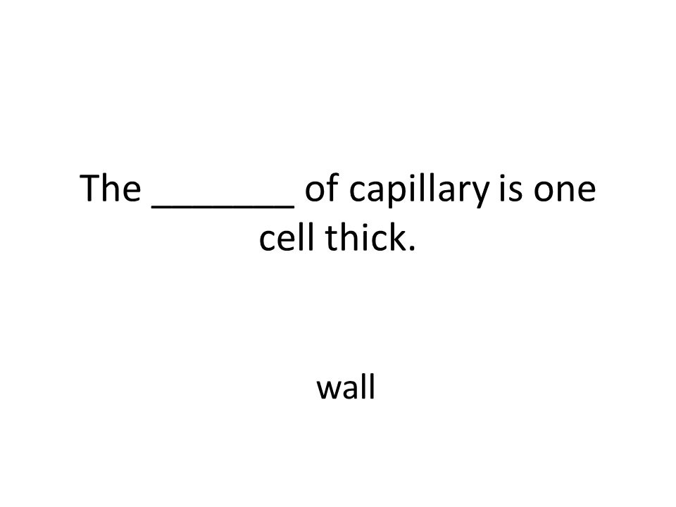 The _______ of capillary is one cell thick. wall
