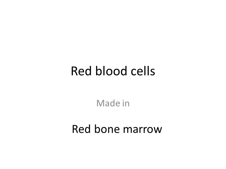 Made in Red bone marrow
