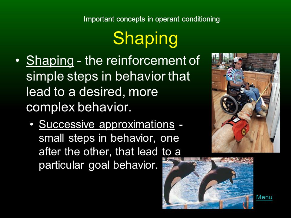 Shaping Shaping - the reinforcement of simple steps in behavior that lead to a desired, more complex behavior.
