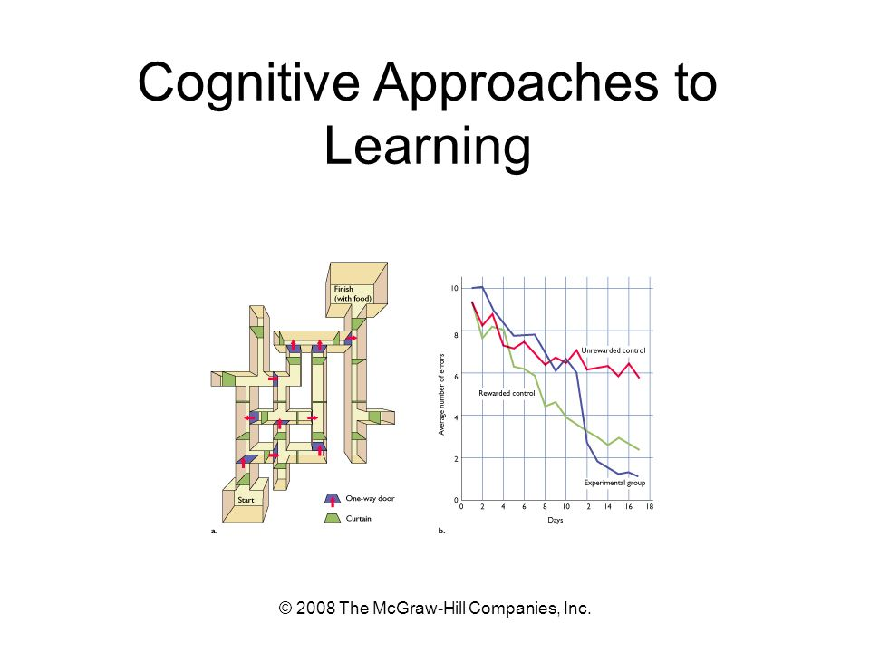 © 2008 The McGraw-Hill Companies, Inc. Cognitive Approaches to Learning